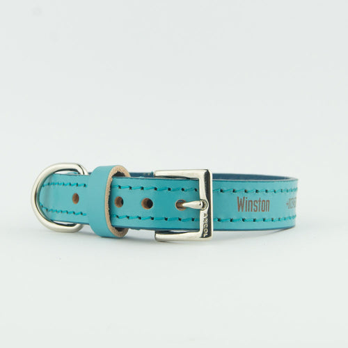 Personalised Ancol Indulgence Aqua Leather Dog Collars with Leads