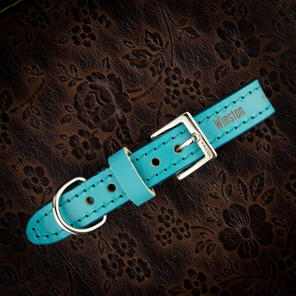 Personalised Ancol Indulgence Aqua Leather Dog Collars with Leads - National Engraver