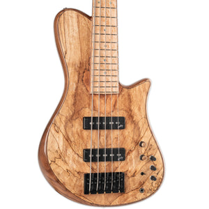 ALBER LOCALLY BUILT 5-STRING BASS W/CASE