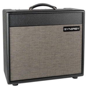 SYNERGY THREE CHANNEL 30 WATT COMBO SLOT FOR ONE MODULE AND BUILT IN CLEAN CHANNEL