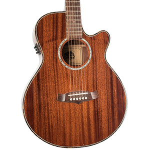 USED TANGLEWOOD TW47 B WITH CASE