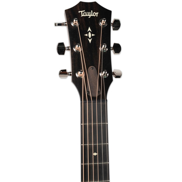 TAYLOR BUILDER'S EDITION 517e SILENT SATIN GRAND PACIFIC V-CLASS BRACING