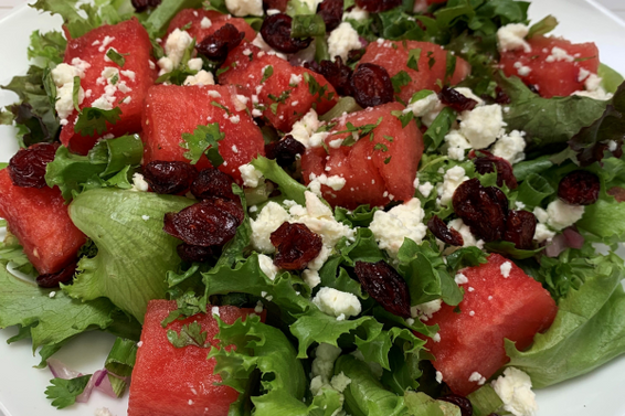 Watermelon Cranberry Salad