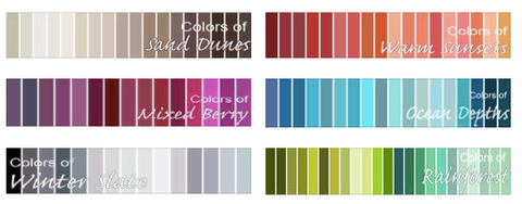 Sari Scarf Color Pallete