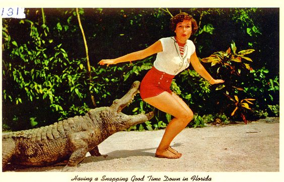 Vintage Florida Postcards