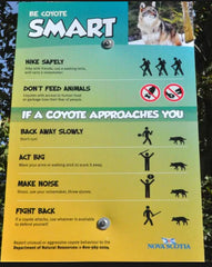 be coyote smart