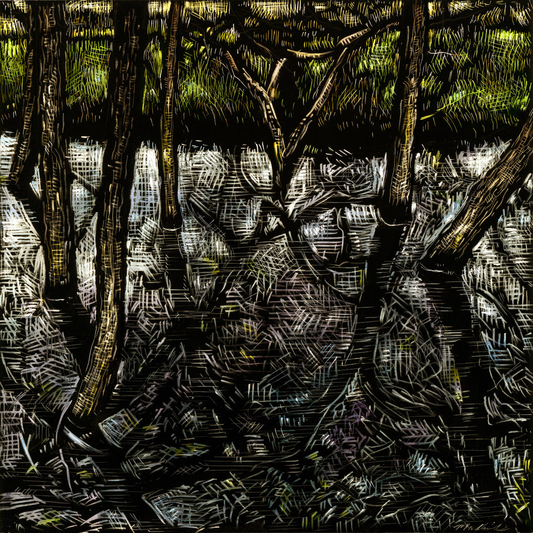 John Martinek: Black Water Trees Ink on Clayboard