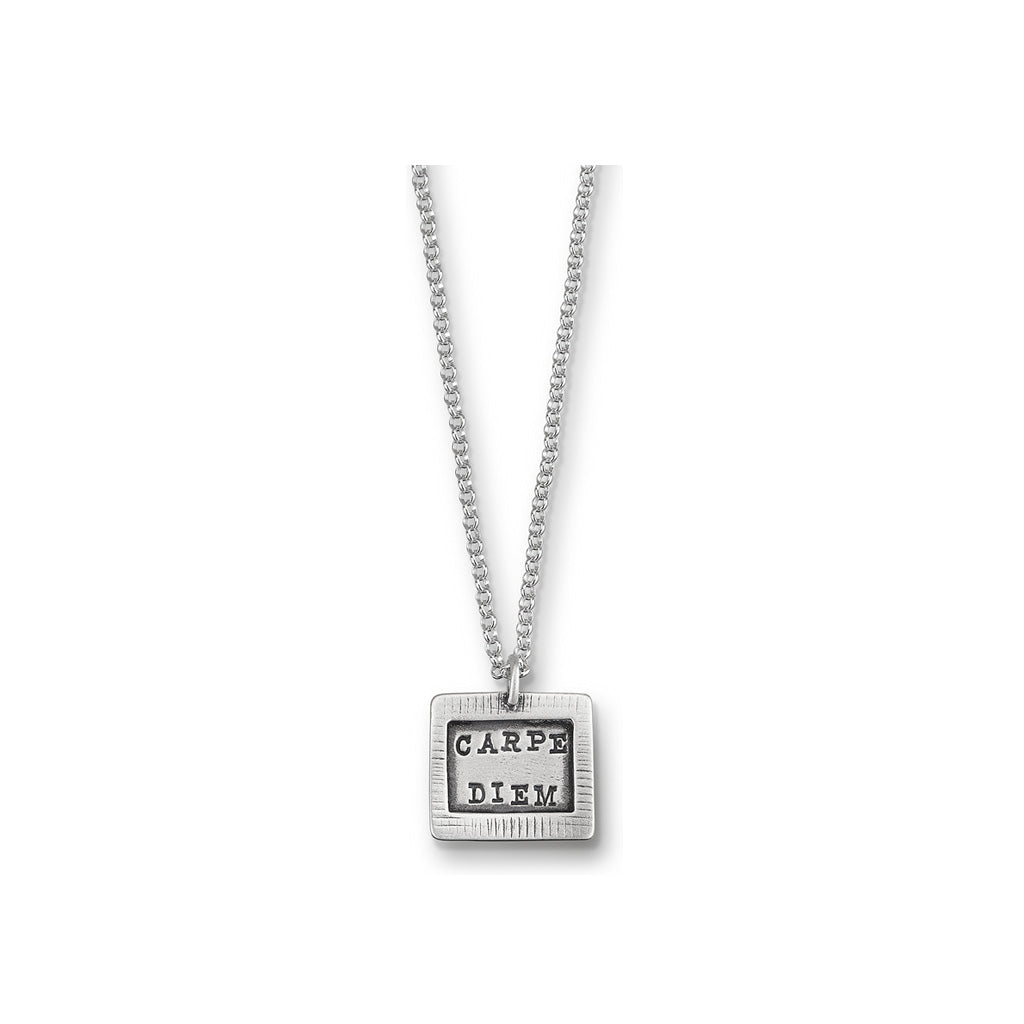 Kathy Bransfield: Pendant with Chain- Carpe Diem