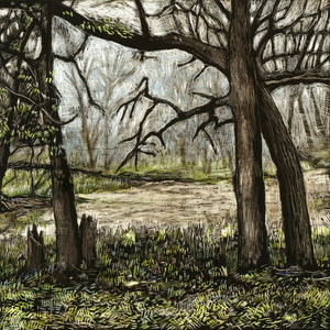 John Martinek: Clear Creek Ink on Clayboard