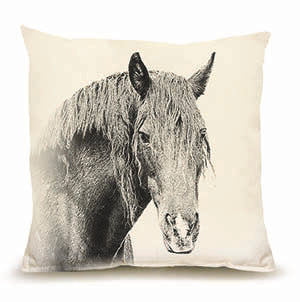 Eric and Christopher: Medium Horse #2 Pillow