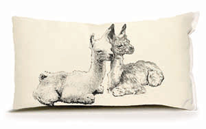 Eric & Christopher: Small Llama Pair Pillow