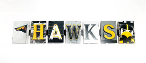 "Amy Kriz Ackman: ""Hawks with Flag and Herky"" Wall Letters"
