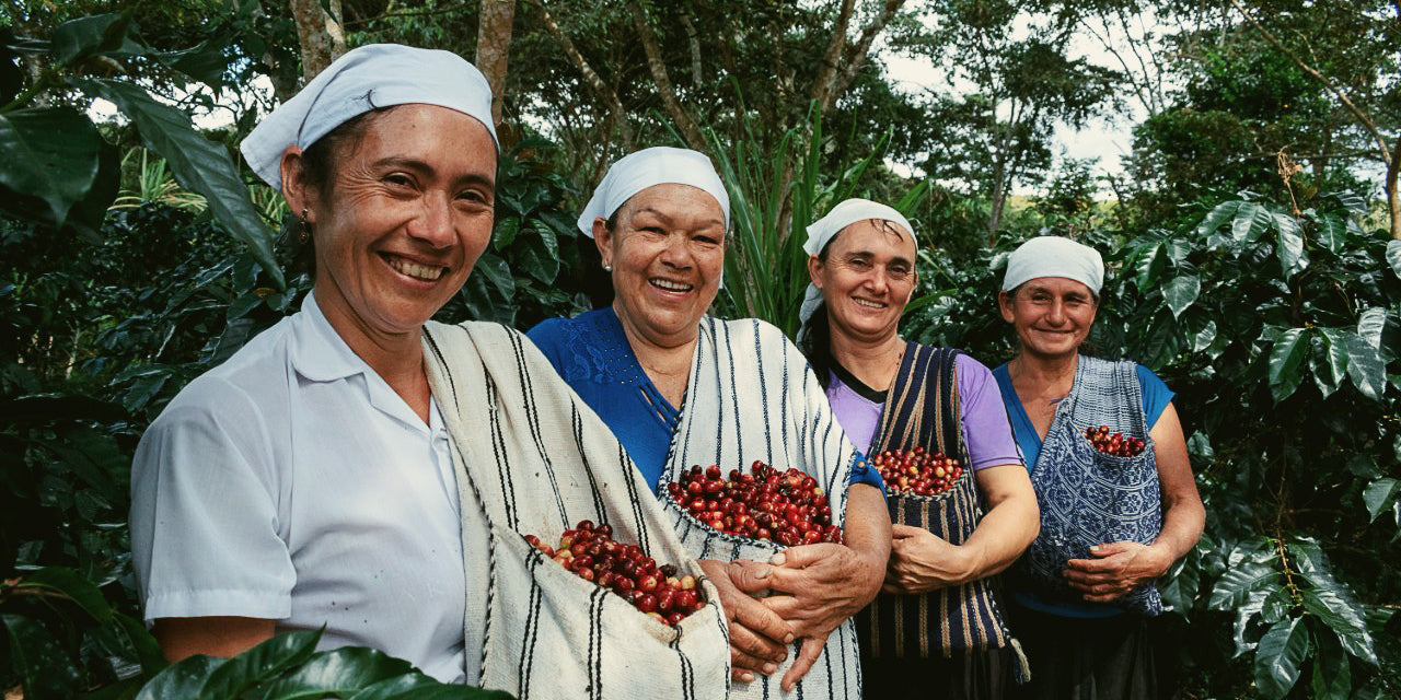 Coffee farmers smile with coffee cherries in Peru.