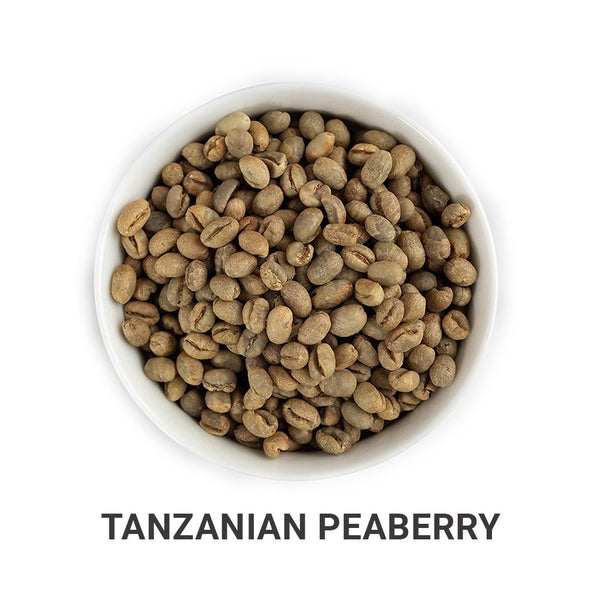 Tanzanian Peaberry green unroasted coffee beans.