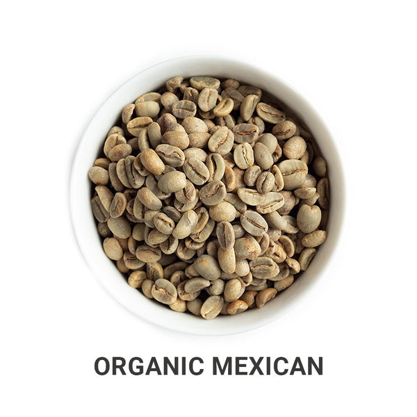 Organic Mexican green unroasted coffee beans.