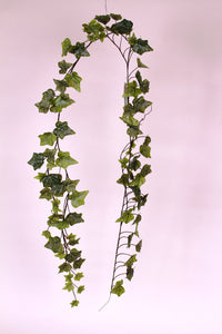 D234563 FROSTED 6 ft Garden Ivy Garland