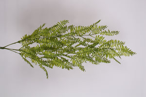 D244547 GR/YEL WOOD FERN HANGING BUSH