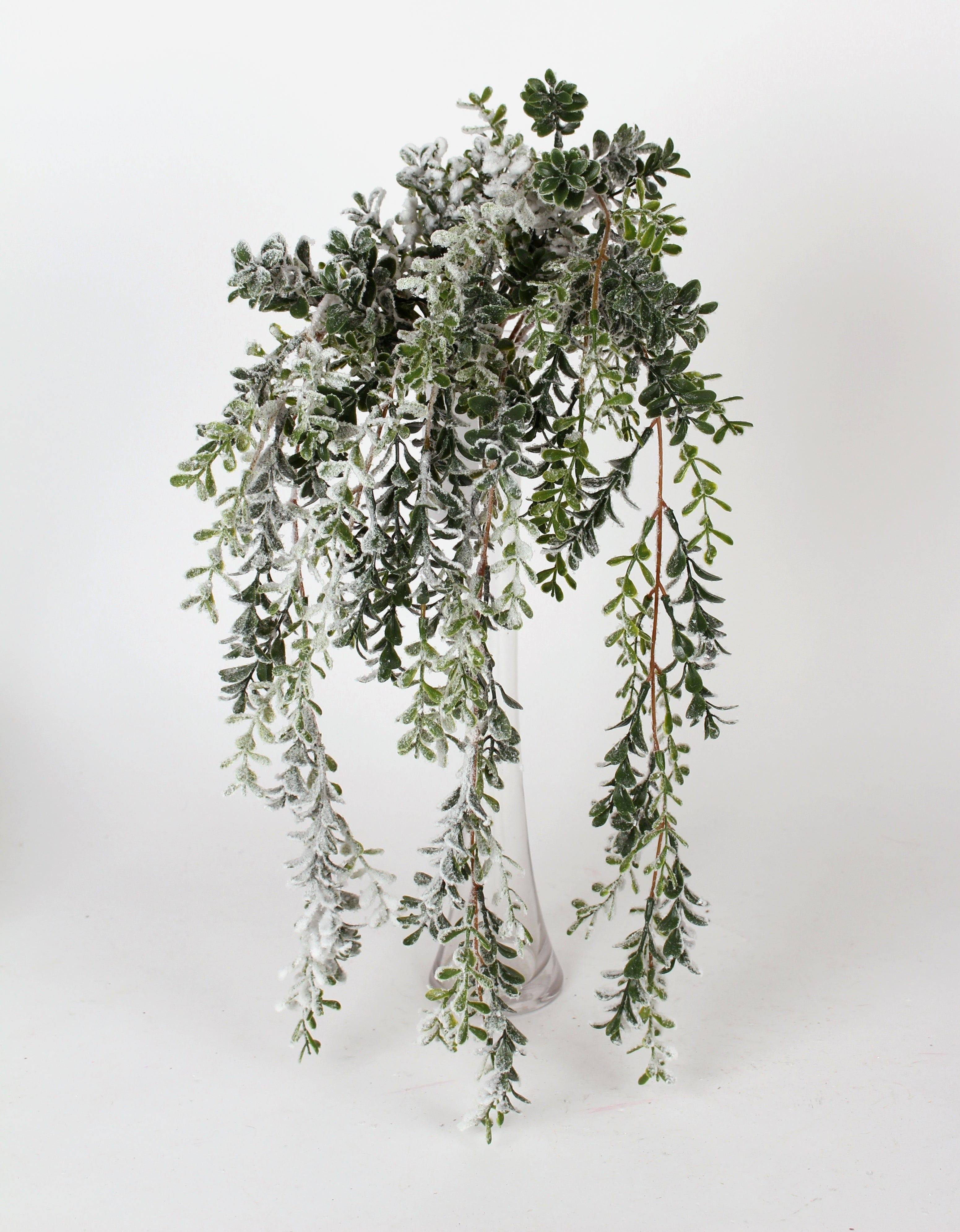 "D247966 - 24"" Snowed Boxwood Vine"