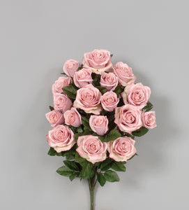 "AS20757 PK - 21.5"" Grandiflora Rose x 18 - Pink"