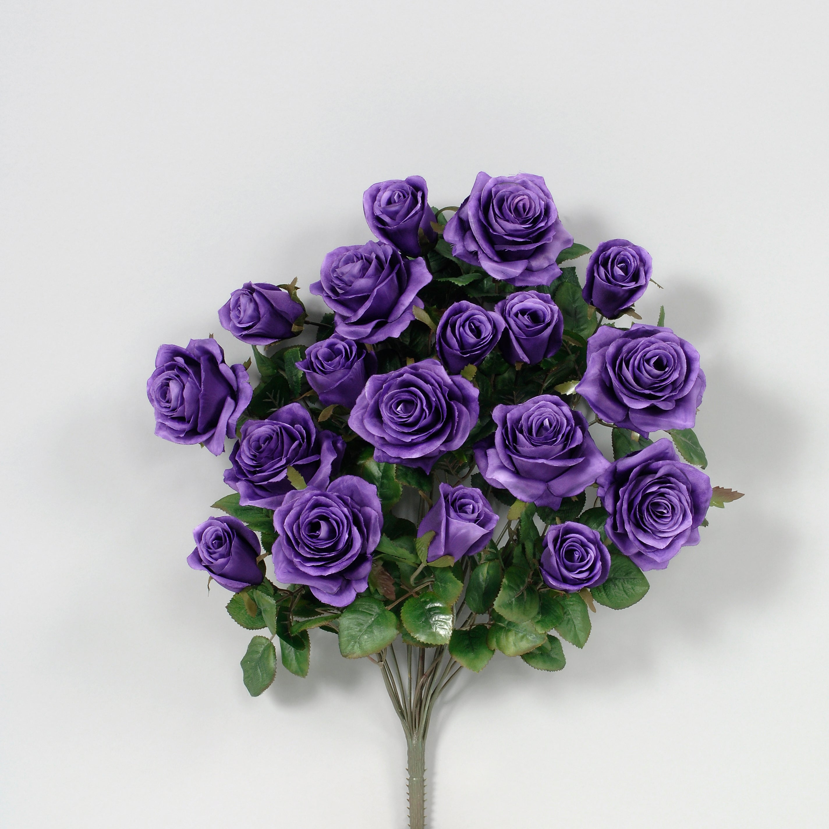 "AS20757 PURP - 21.5"" Grandiflora Rose x 18 - Purple"