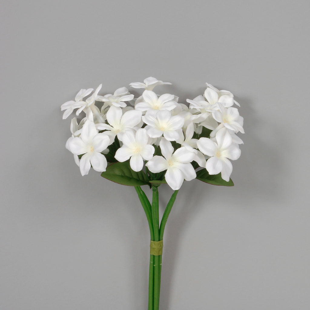 "10"" Stephanotis Bundle"