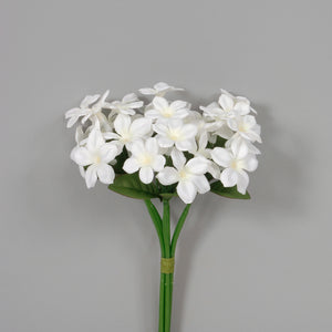 "AS31609 WH - 10"" Stephanotis Bundle"