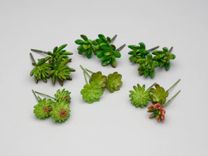 "AG17003 4"" Succulent Pick - Bag of 18"