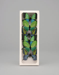 "AH57398 - 3"" Plastic Painted Butterfly"
