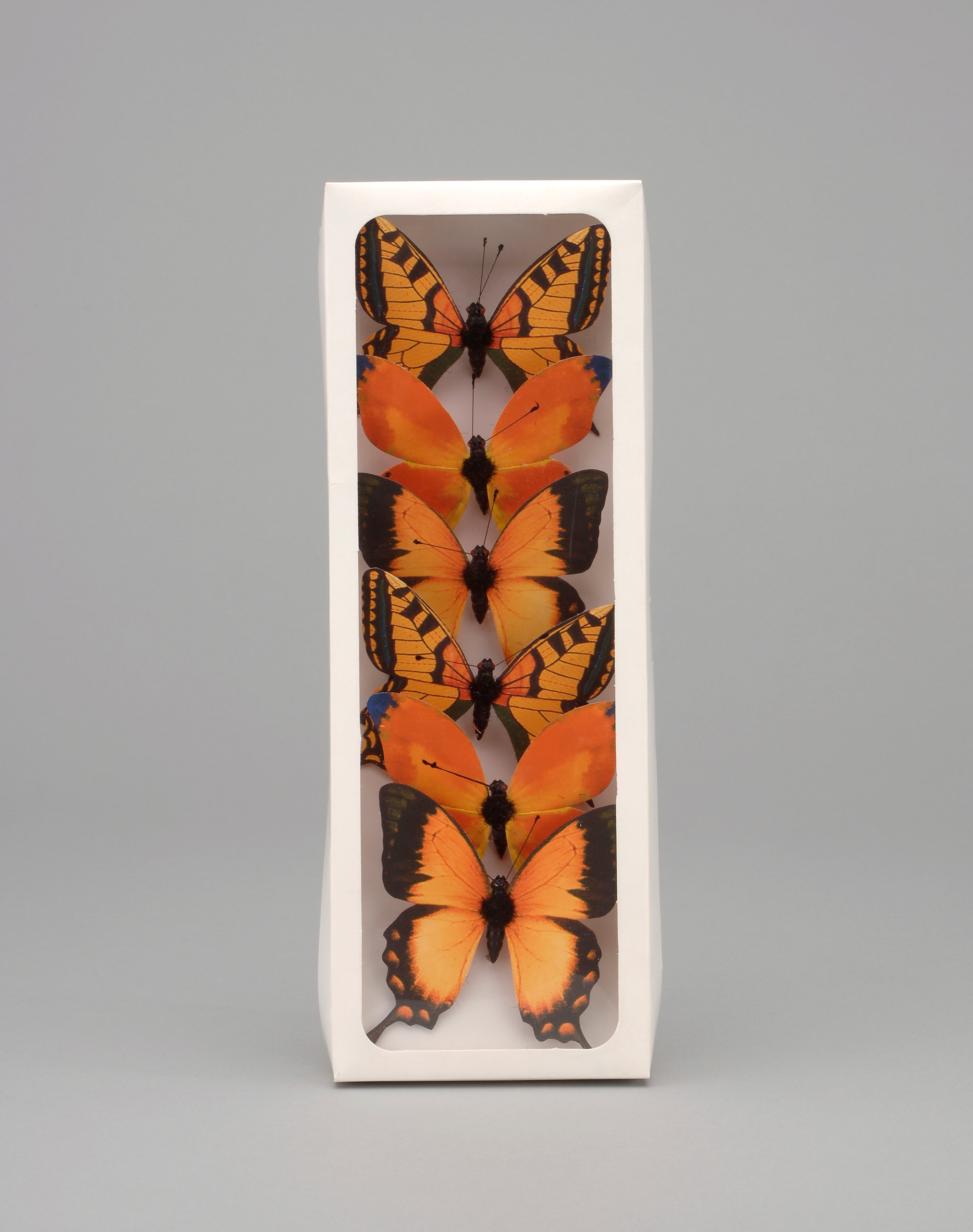 "AH57398 ORG- 3"" Plastic Painted Butterfly"