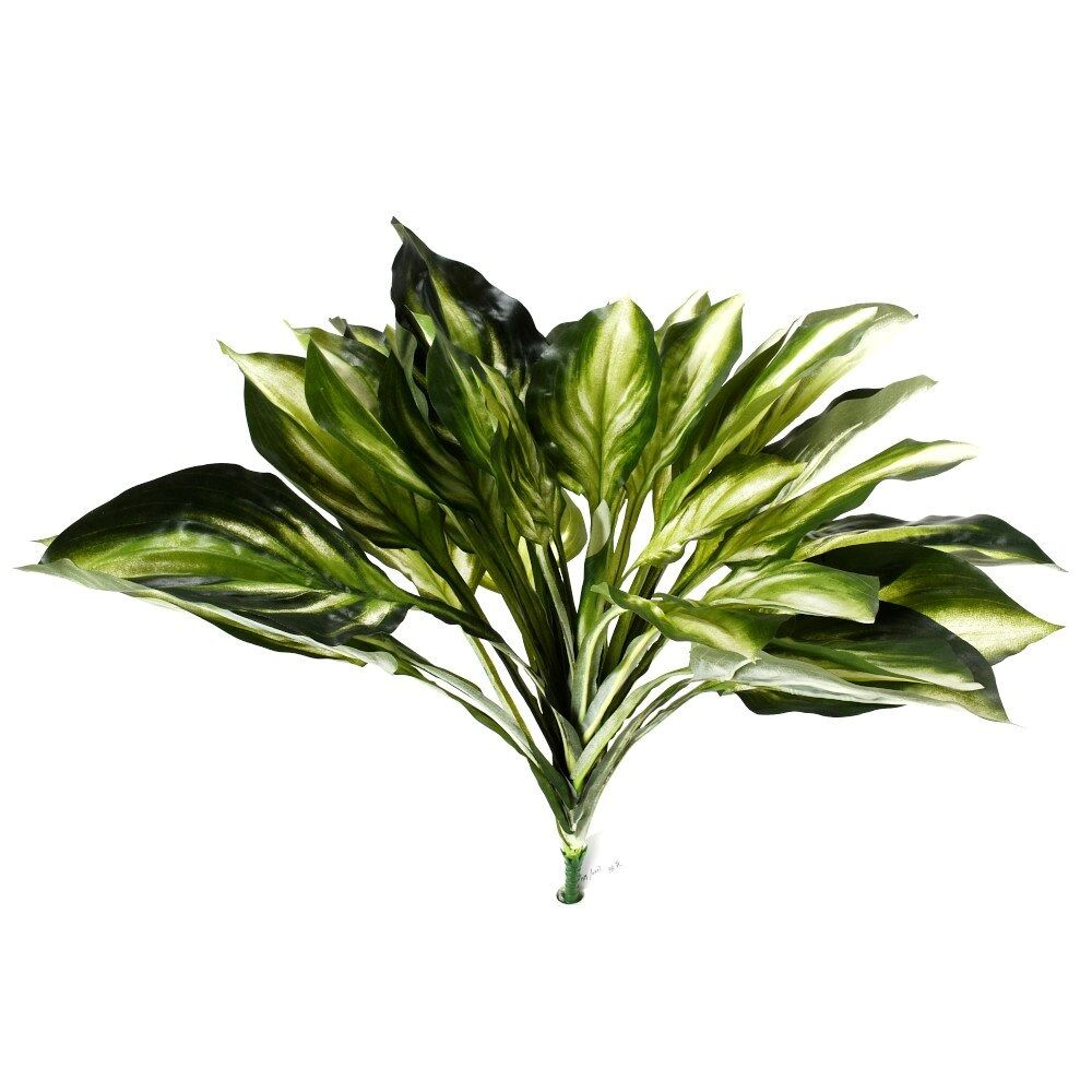 "D287449 GREEN 27"" HOSTA BUSH"