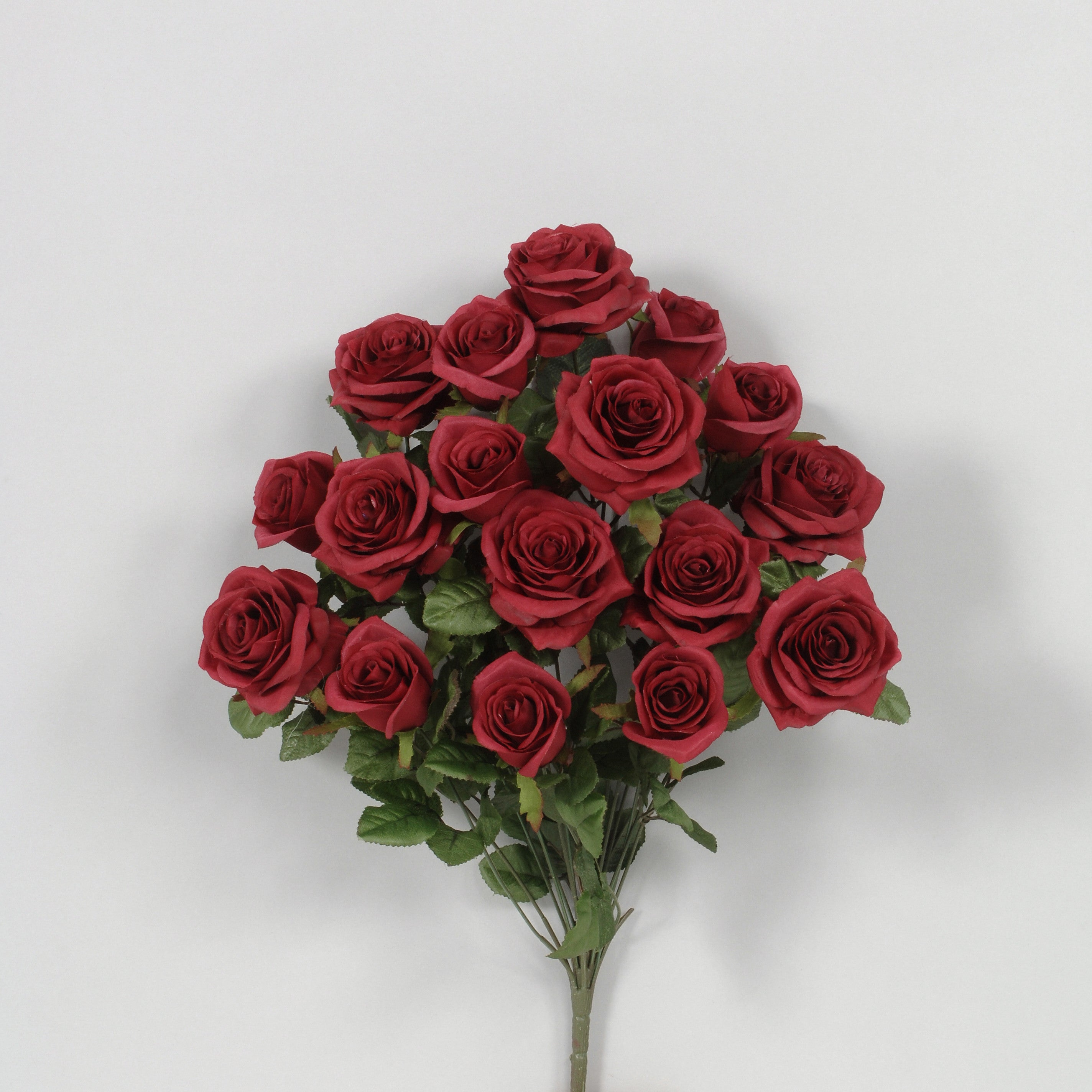"AS20757 - 21.5"" Grandiflora Rose x 18 - Burgundy"