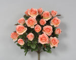 "AS20757 - 21.5"" Grandiflora Rose x 18 - Peach"