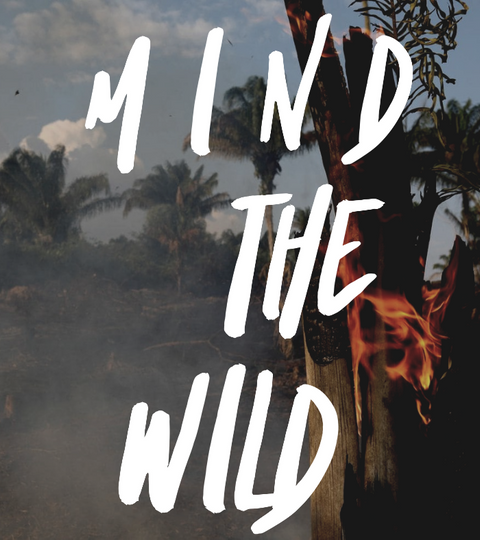 Save the Rainforest: Mind the Wild Project Donates to Earth Alliance