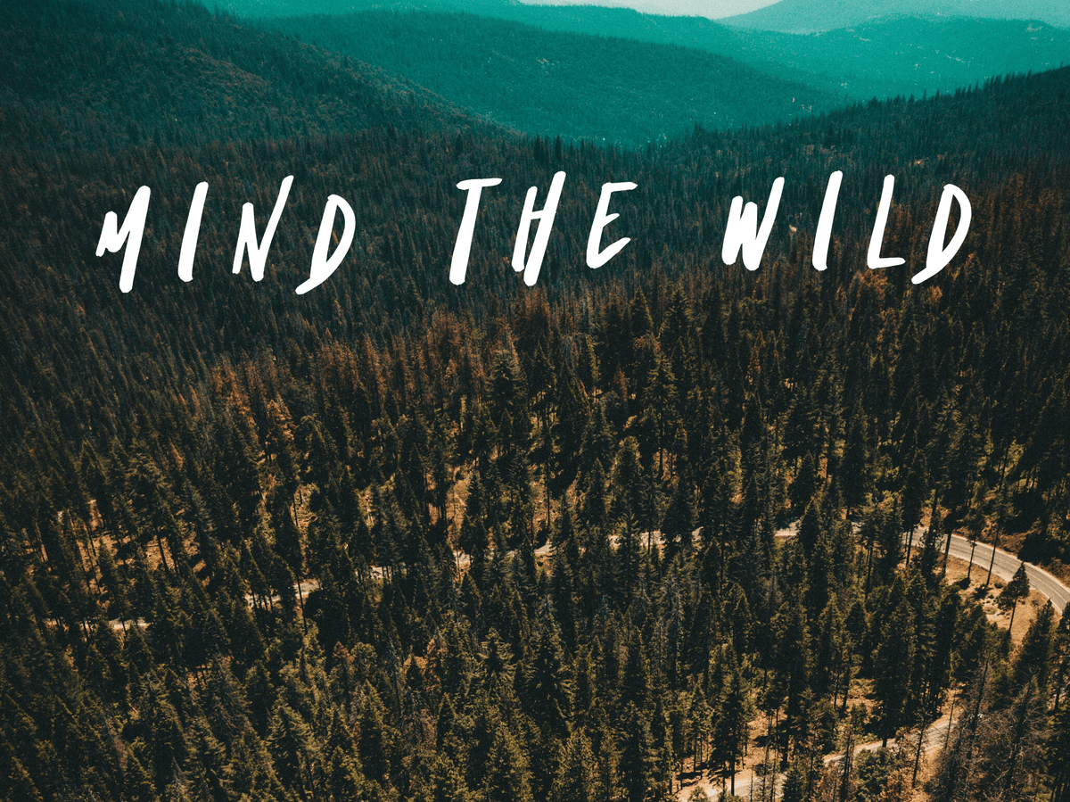 "What is the ""Mind the Wild"" Campaign?"