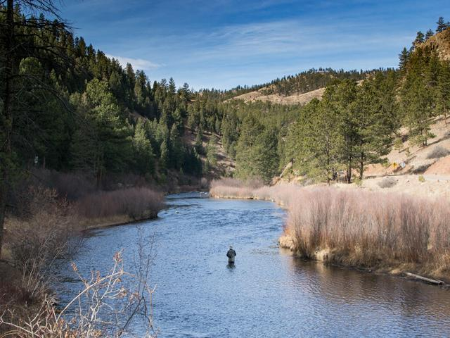 What's the best fishing near Denver? The South Platte River has you covered