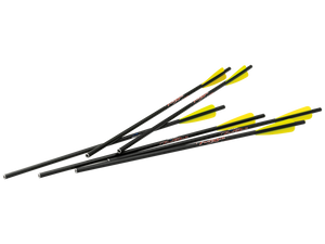 "FIREBOLT 20"" CARBON ARROWS (6 PK)"