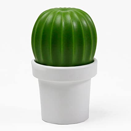 Salt Grinder or Pepper Grinder Cactus in White and Green