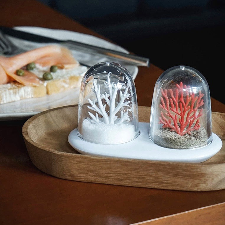 Salt and pepper shaker set Coral Reefs Bleaching ocean climate change in white