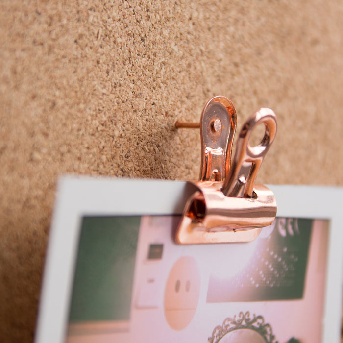Push Pin Bulldog Clips