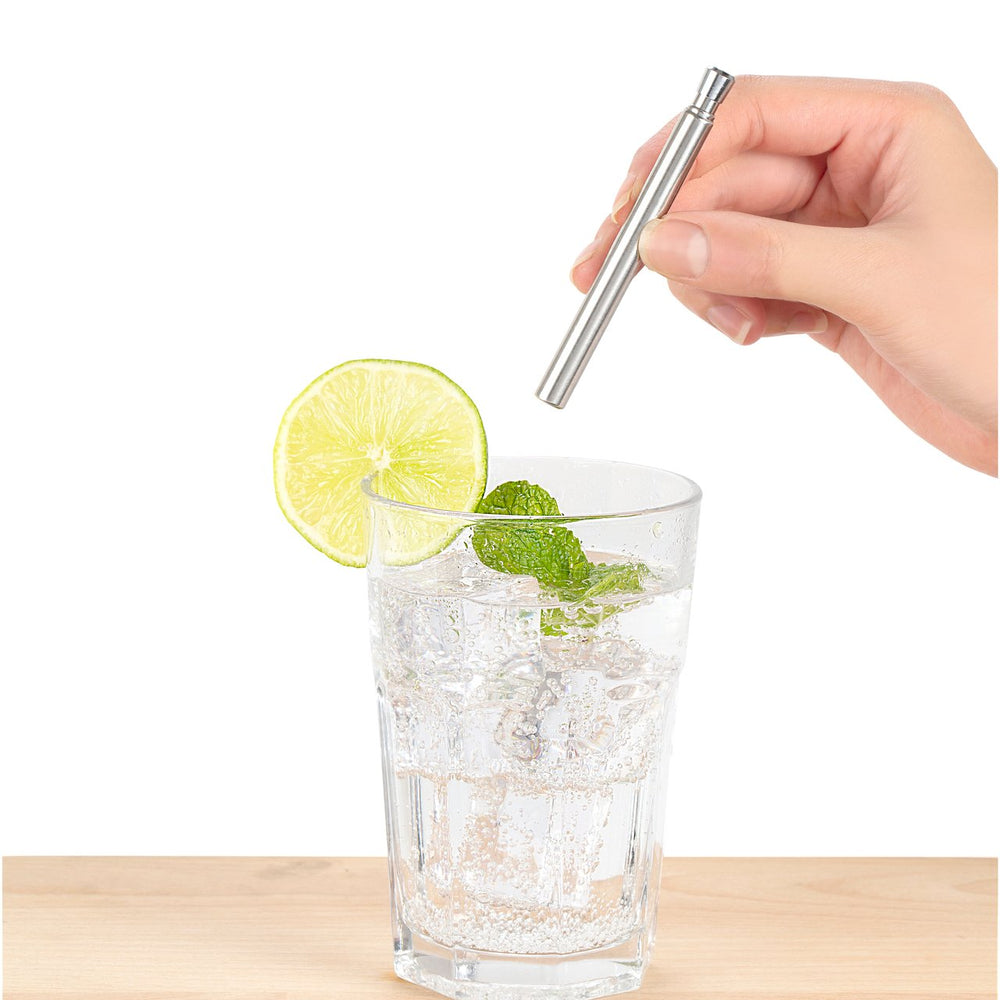 Metal Straw and Brush Travelling Set Silver