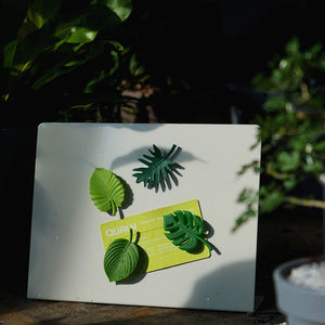 Magnets Tropical Stationary set of 4 Green