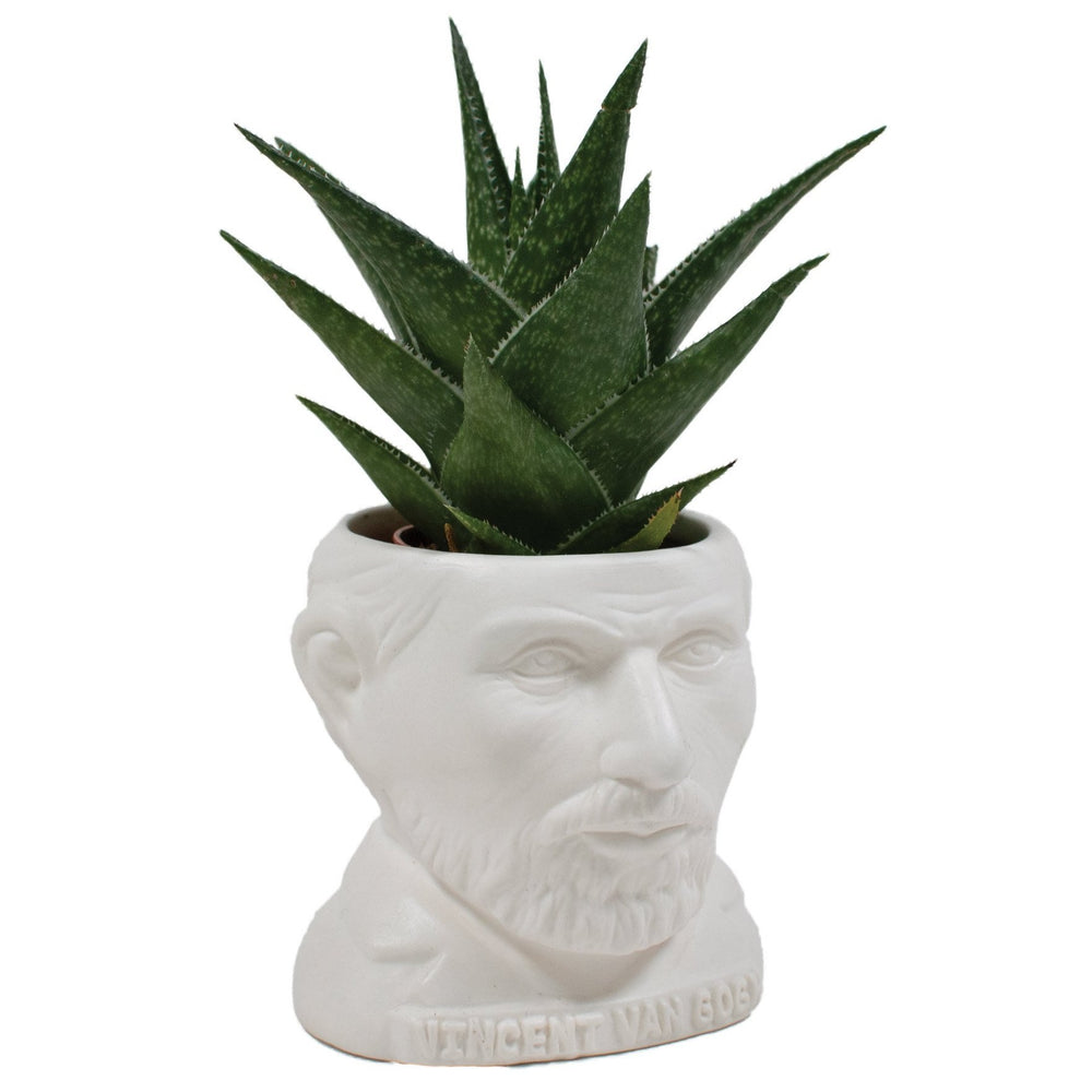 Plant Pot Vincent Van Gogh Ceramic Mini Planter White