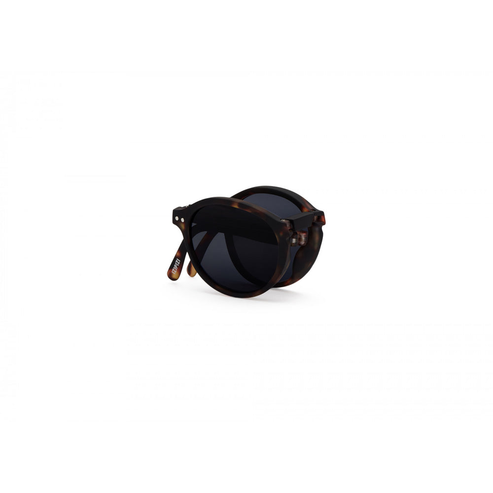 Load image into Gallery viewer, Sunglasses Style Foldable Tortoise