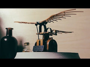 Load and play video in Gallery viewer, Da Vinci Collection Flying Machine Model Kit