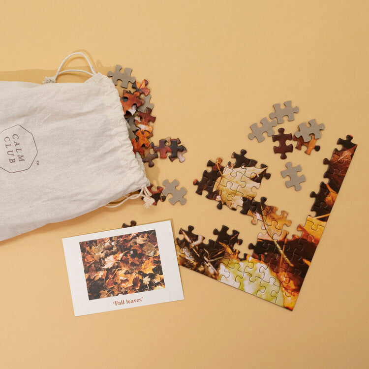 500 Piece Jigsaw Puzzle 'Fall Leaves' Mindfulness Gift