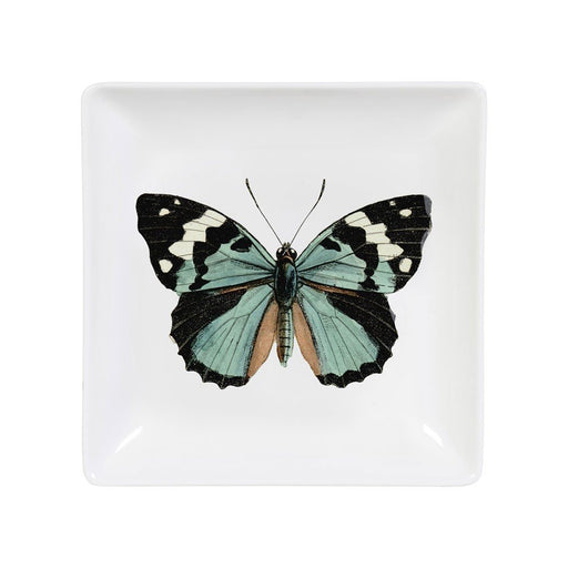 Trinket tray with butterfly illustration Home cubic - Brand Academy Store