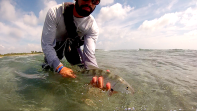Morning Bonefish Sessions