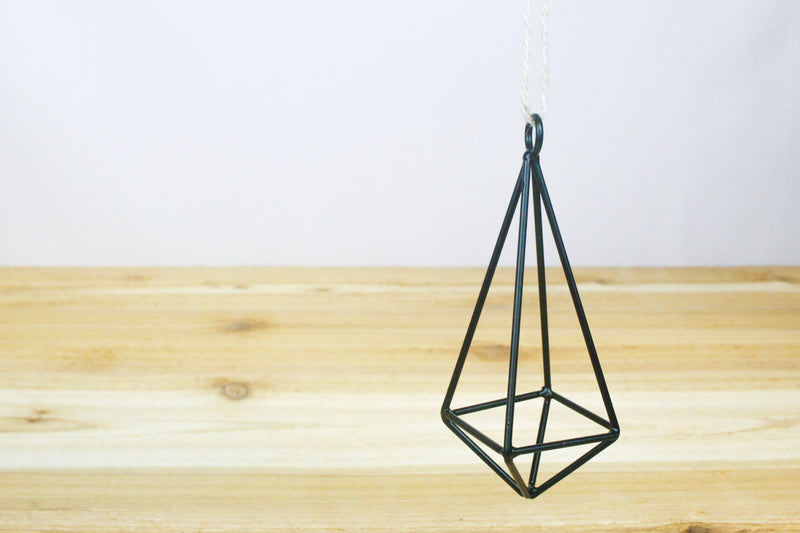 Hanging Geometric Metal Pendant with Assorted Small Air Plants from AirPlantShop.com