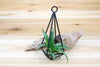 Sale: 40% Off [3, 6 or 12 Pack] Hanging Geometric Metal Pendants with Assorted Air Plants