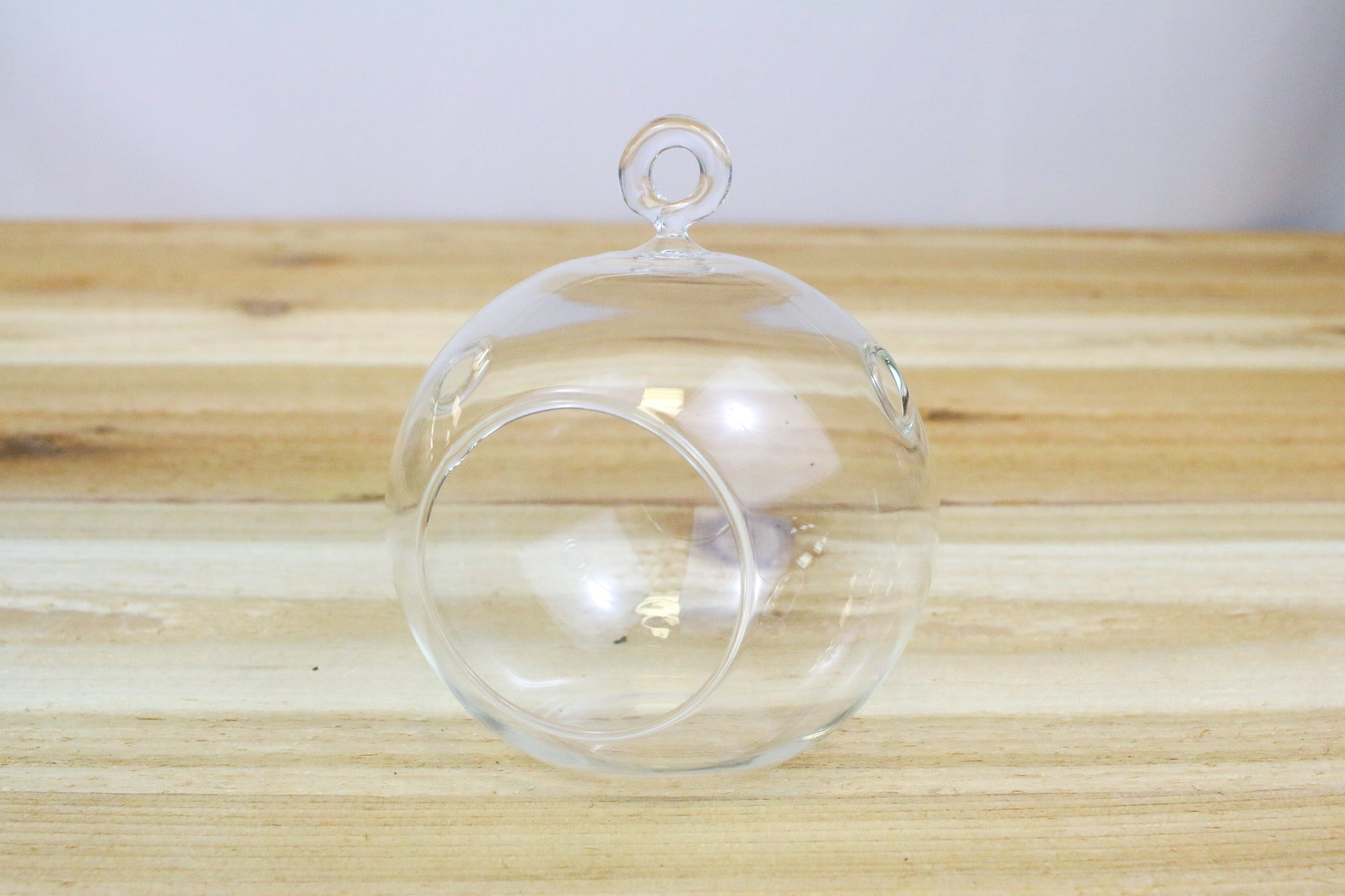 Wholesale: Flat Bottom Hanging Globe Terrariums [Min Order 12]